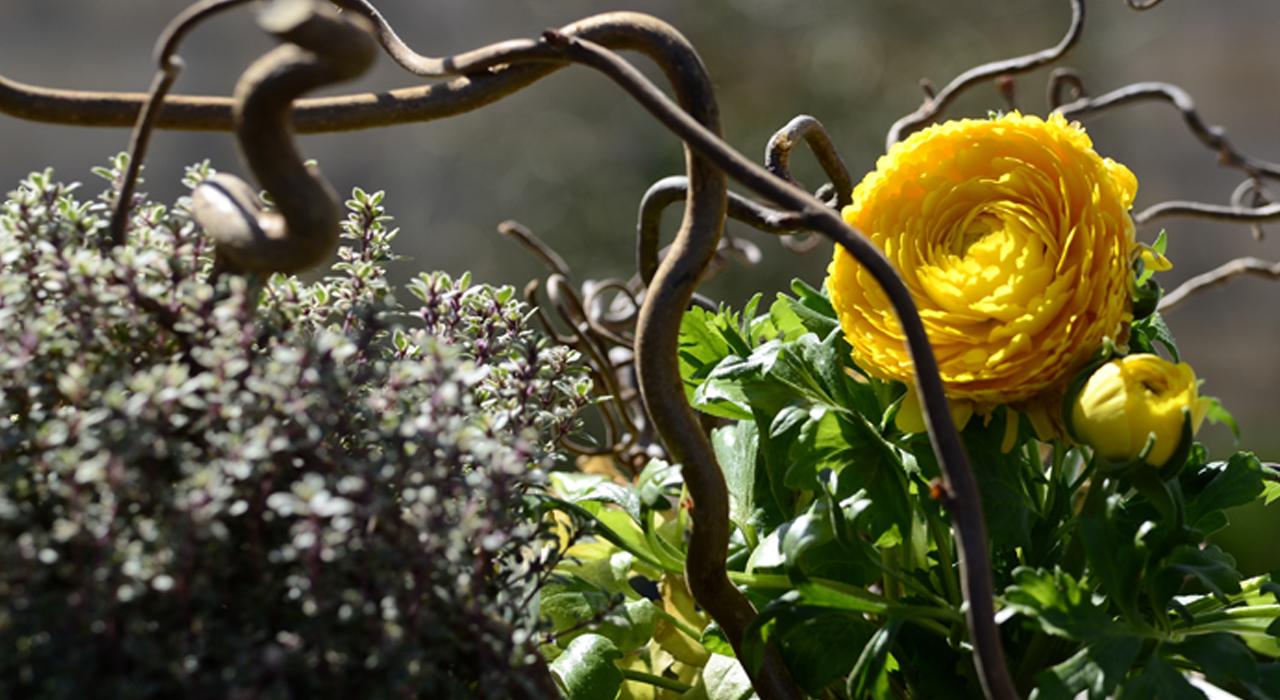 mille-etoiles-bloemstukken-hoofdfoto-2