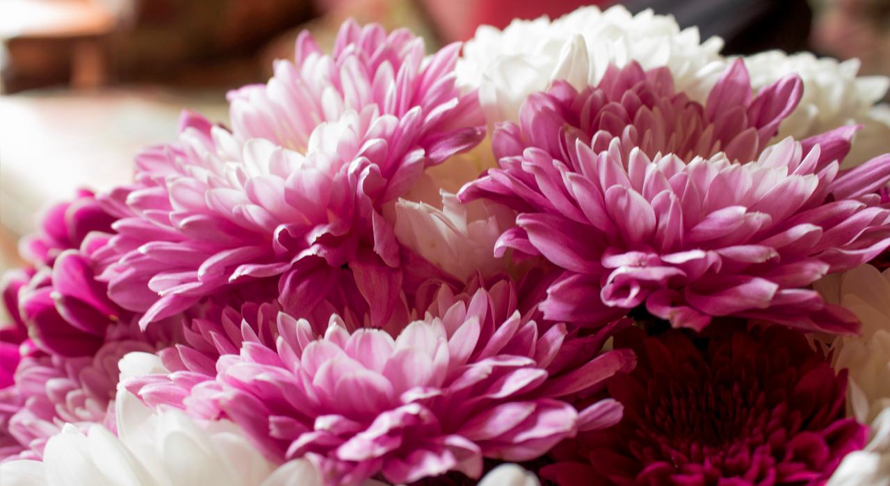 mille-etoiles-bloemstukken-hoofdfoto