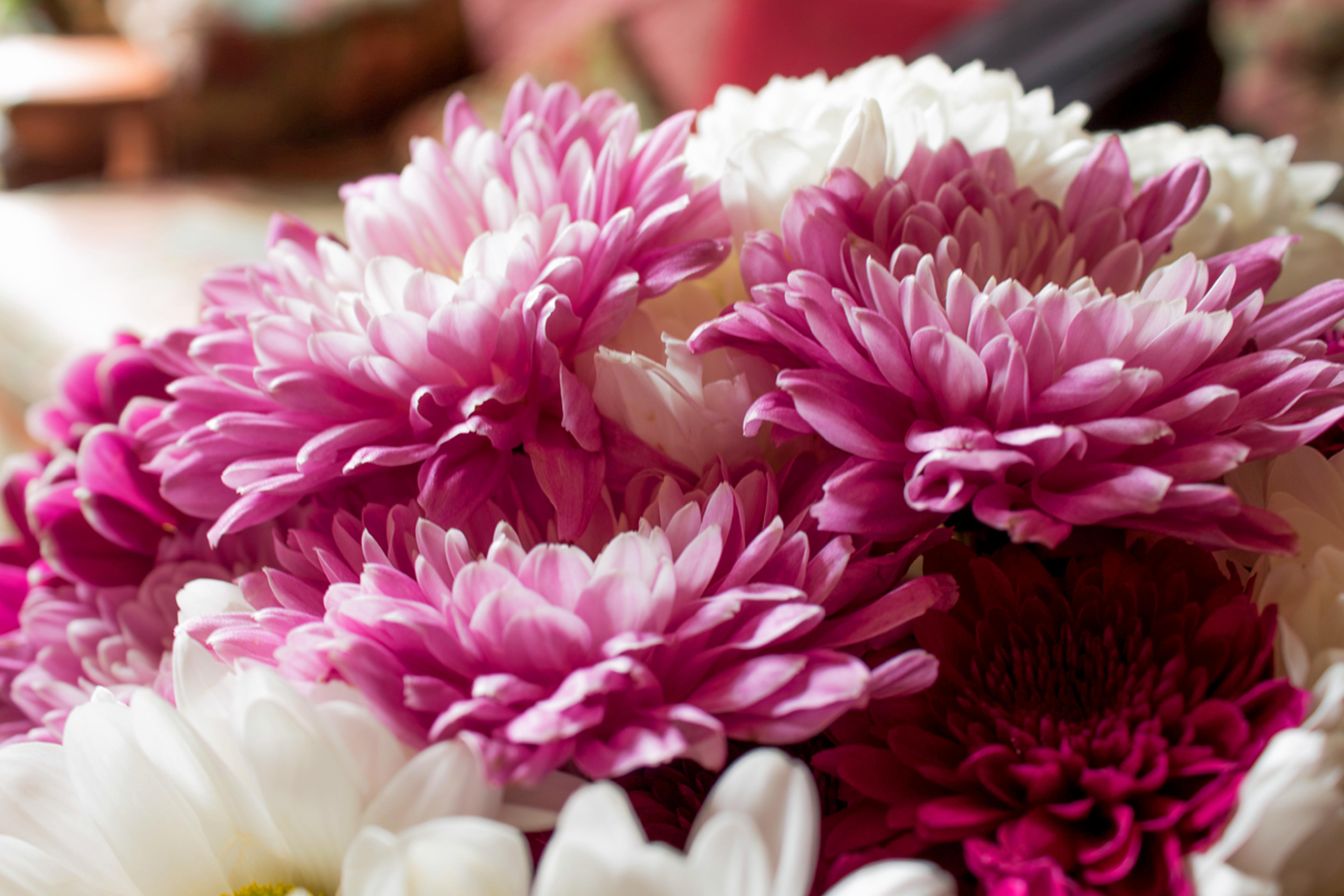 mille-etoiles-home-bloemstukken