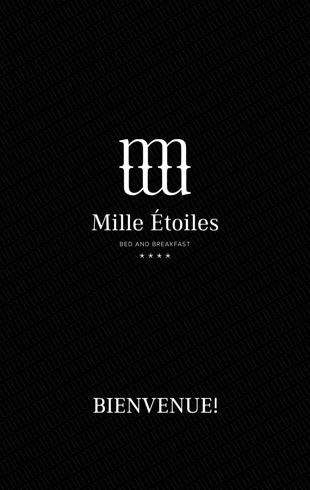 mille-etoiles-home-over-ons-FR